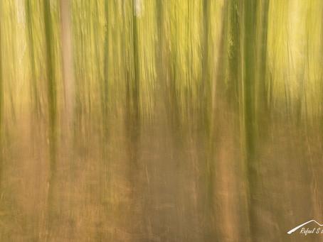 La abstracción en la fotografía de paisaje