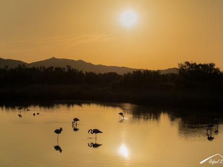 Brillante amanecer - Reflexión sobre la fotografía de naturaleza y el uso de aplicaciones