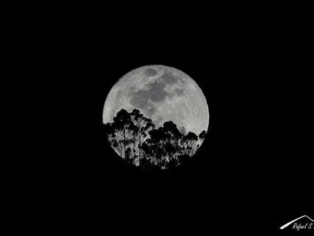 La última superluna del 2017