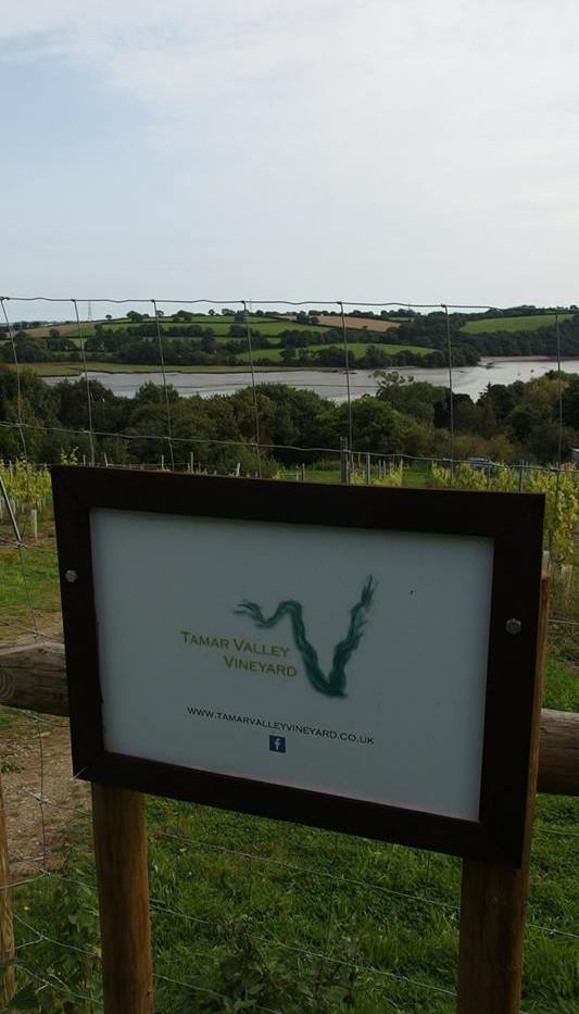 Tamar Valley vineyard sign.jpg