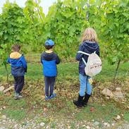 Kids inspecting the vines - Aug 2021.jpg