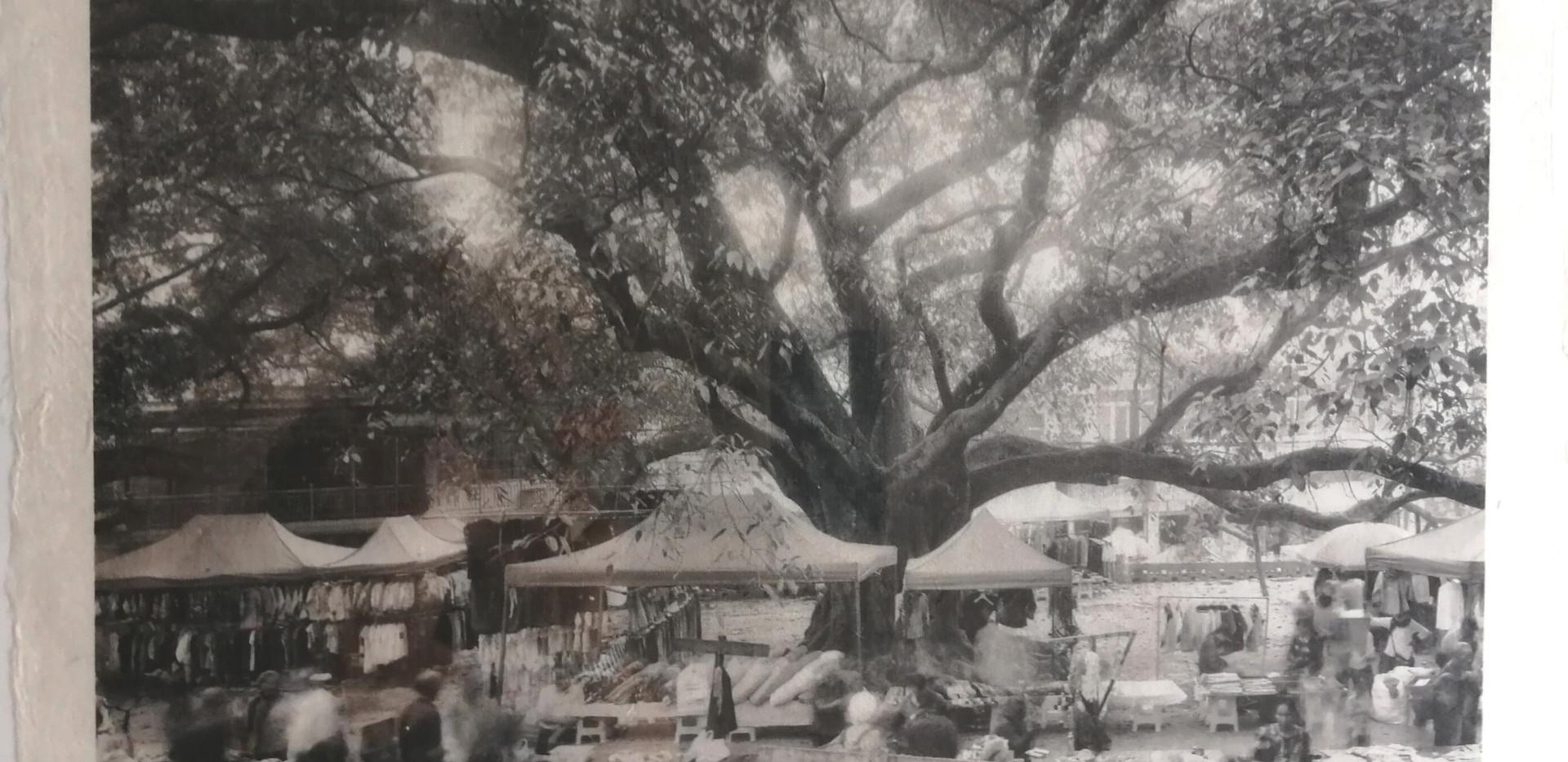 Fotografie auf handgeschöpftem Papier | Pumi Dorf