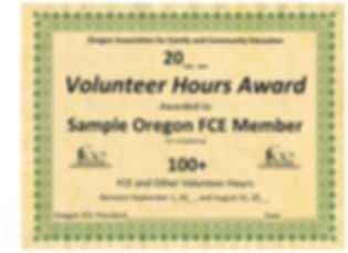 Volunteer Hours Award Form 20_ _.jpeg