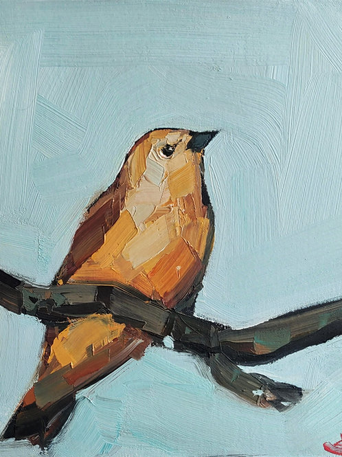 Original Painting 'Yellow Canary'