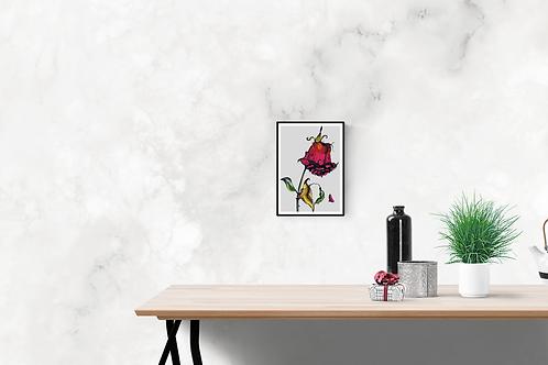A4 Size Original Art Print 'Red Rose'