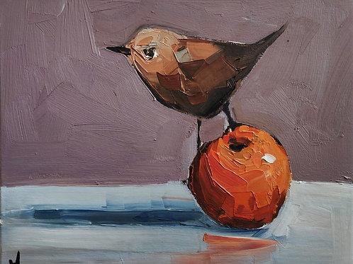 Original Painting 'Wren On The Orange'