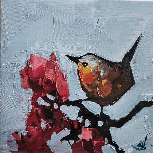Original Painting 'Robin On The Blossom Tree'