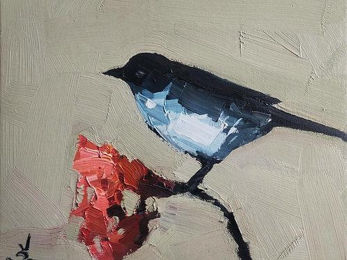 Original Painting 'Black Magpie'