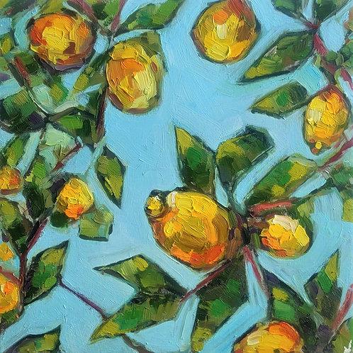 Original Painting 'Lemon Tree Blue Sky'