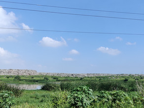 விளிம்பில் பள்ளிக்கரணை (Pallikarnai on the edge)