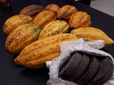 Frutas de cacao 20180110_202140.jpg