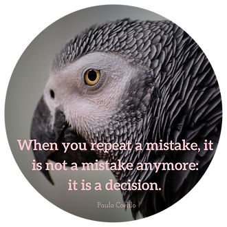 When you repeat a mistake, it is not a mistake anymore; it is a decision.