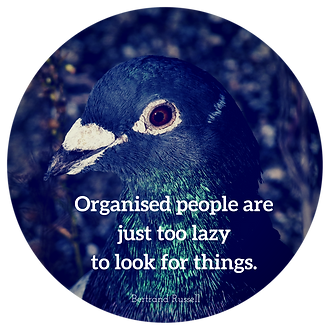 Organised people are just too lazy to look for things.