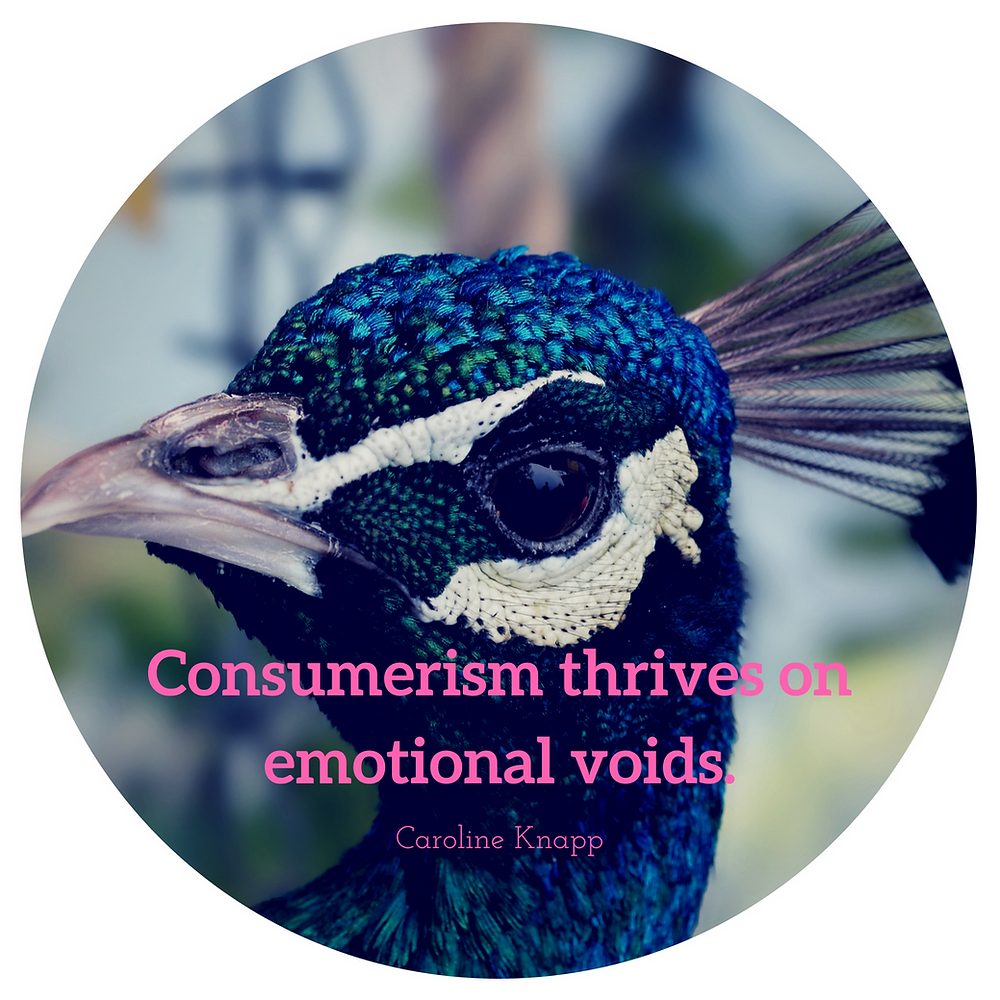 Consumerism thrives on emotional voids