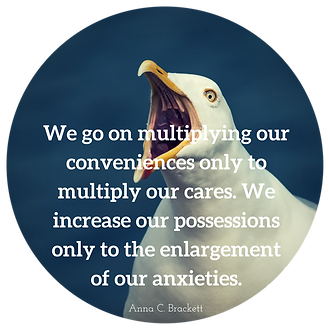We go on multiplying our conveniences only to multiply our cares. We increase our possessions only to te enlargement of our anxieties.