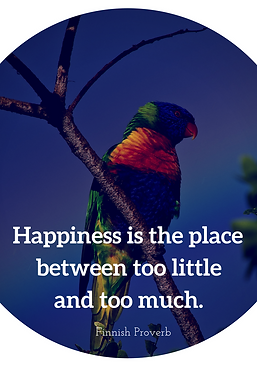 """Happiness is the place between too little and too much"""