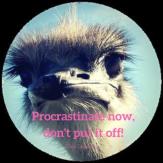 Procrastinate now, don't put it off!