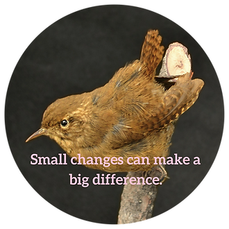 Small changes can make a big difference.