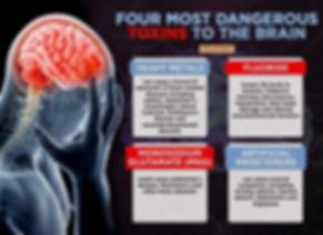 4 toxins that destroy brain cells.jpg