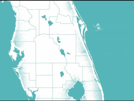 2020 Ultimate Guide to Florida Saltwater Fishing