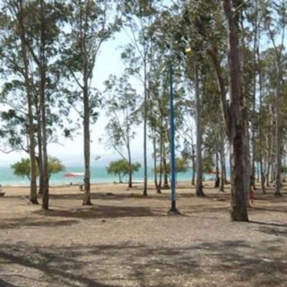 Master Campers 26 Kinneret Dugit Beach 18.6.21