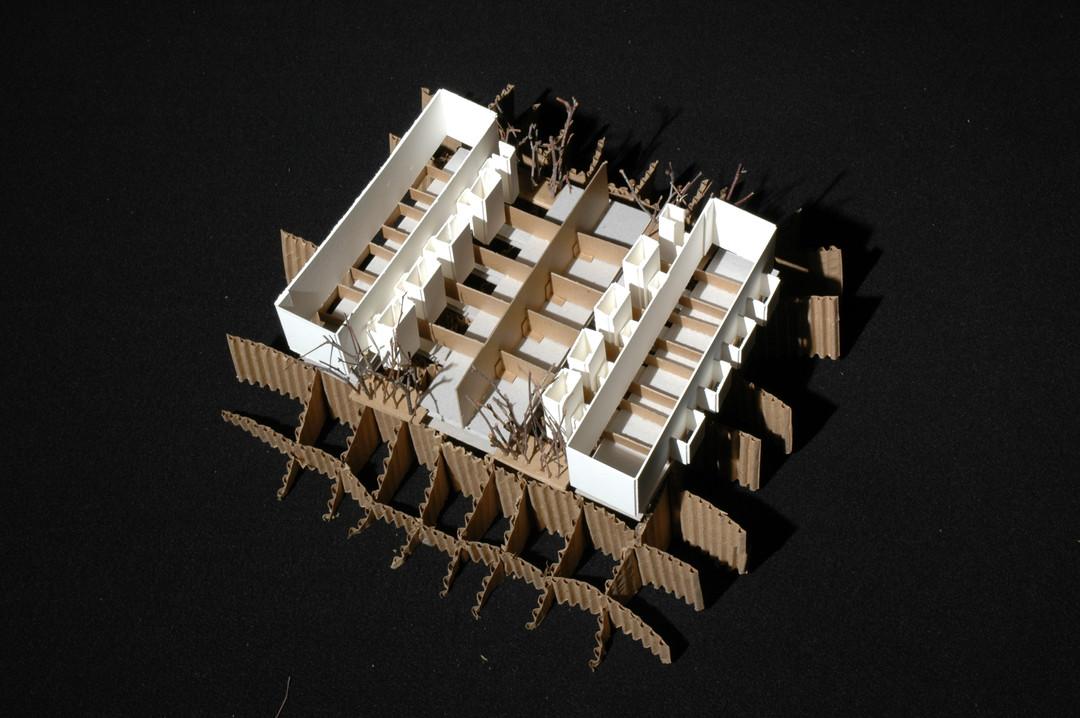 Architecture Salk Center Model