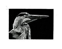 WE - Heron.jpg
