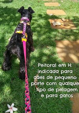 IMG_8720.JPEG