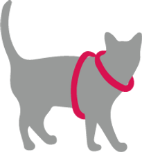 GATO-H.png