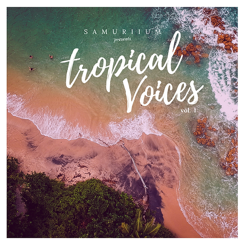 Tropical Voices, Volume 1 - CD Digifile (Signed)