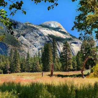 Yosemite view 0511_.jpg
