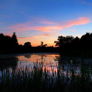 Kendleshire Sunset 0456