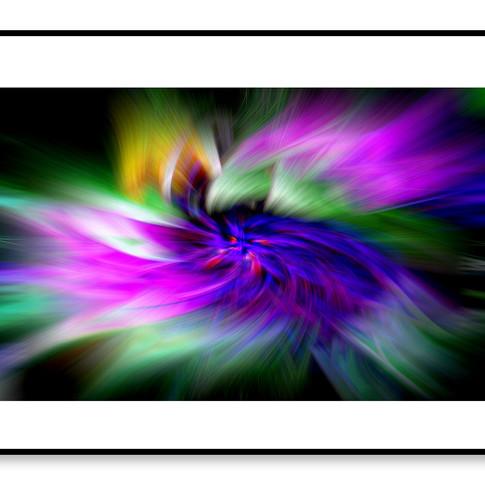 Abstract flower web.jpg