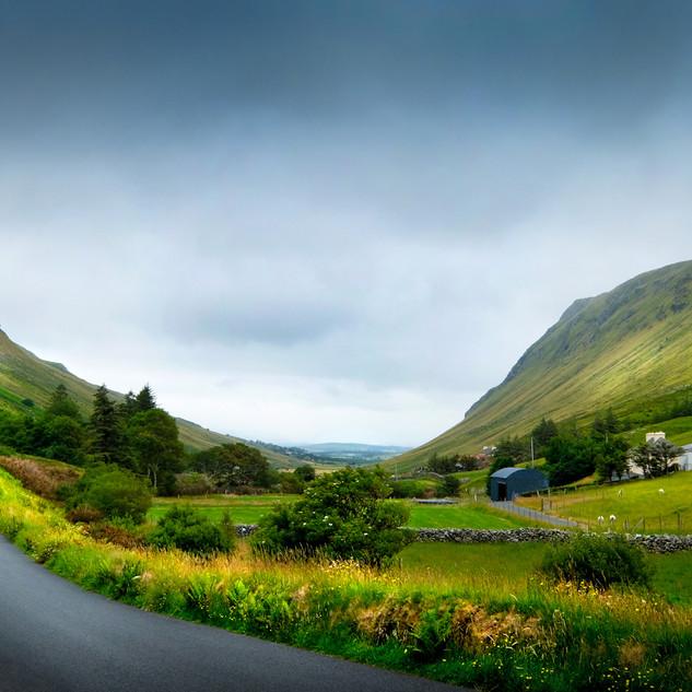 Irish Valley Colour 0473.jpg