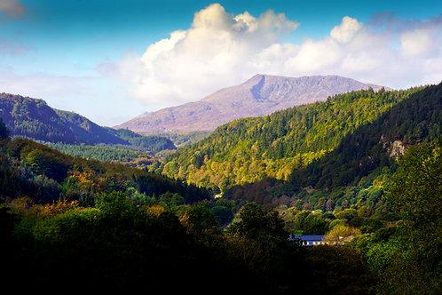 Wales 1224