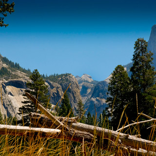 Yosemite View 0340.jpg