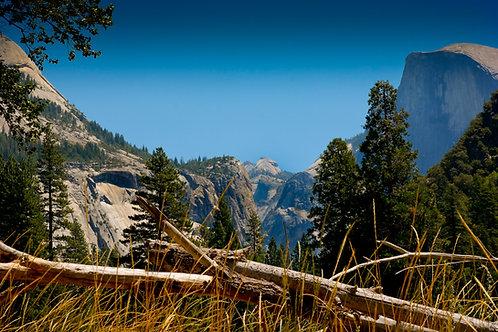 Yosemite View 0340