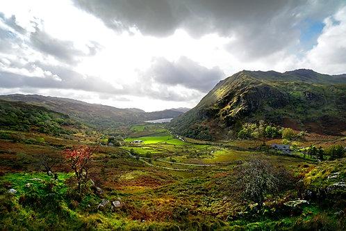 Wales 17