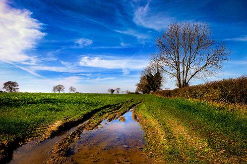 Cotswold Farmland 0319