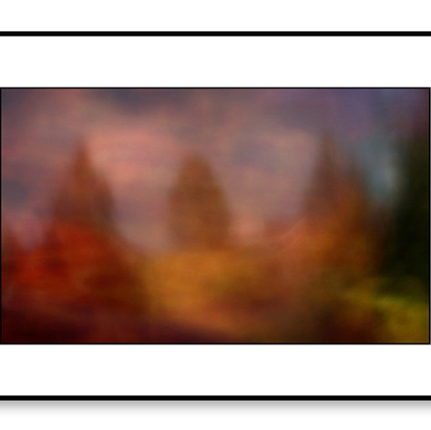 ICM River Frome web_edited-2.jpg