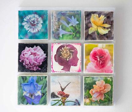 Flower Quilt Photo Encaustic Barbara Bow