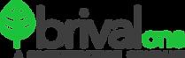 brival_GROUP_logo_dark.png