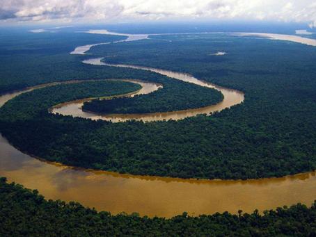 Wonderful Amazon River