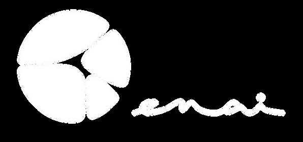 HOTEL_ENAI