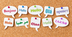 PROFESSIONAL TRANSLATORS on Request