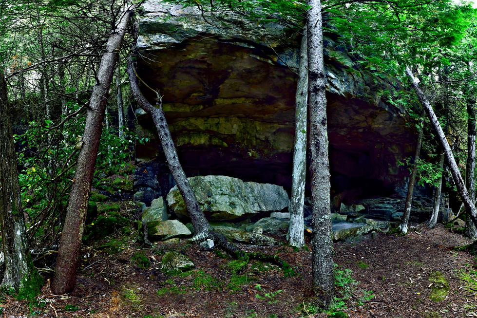GS-115-7957H-GROTTO