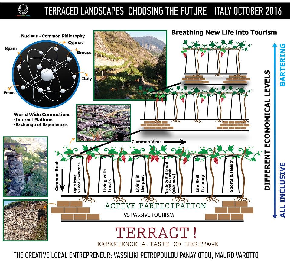 vas design terract-01.jpg