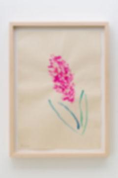 drawing_hyacinth_revolution_nobuhiro_shi