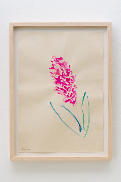 drawing_hyacinth_revolution_nobuhiro_shi