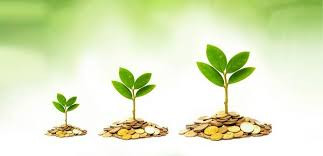 12 princípios para ter sucesso e prosperidade